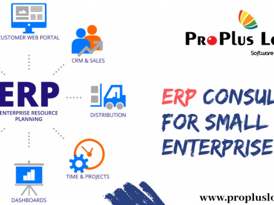 ERP Consultants For Small Medium Enterprise